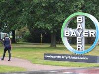 Bayer transparant over eigen glyfosaatstudie