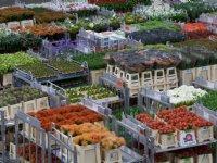 FloraHolland stelt opslagkosten Deense karren uit