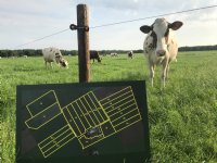 Droogte dwingt 'nieuwe weiders' tot time-out
