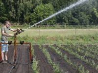 Verbod op grondwateronttrekking bij natuur