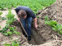 Flevoland steunt bodemproject met 464.000 euro