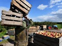 Werken in agro, ook zonder groene vingers