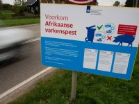 Afrikaanse varkenspest breidt verder uit in België