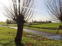 Utrecht wil bodemdaling sneller aanpakken