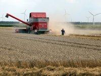 Akkerbouwvoorman vindt dat Europa graan extra moet steunen