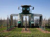 Vrijstelling voor paraffineolie in appel en peer