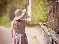 Luxemburg zet hek tegen varkenspest