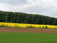 Duitse boeren strijden tegen compensatiegebieden