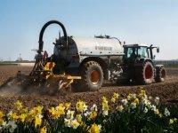 Voor 11,4 miljoen euro boetes na overtreden meststoffenwet