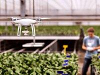 Ook boomkwekers en fruittelers zien nut van drone