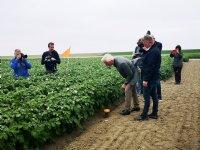 Boeren Holwerd plaatsen alternatieve peilbuis