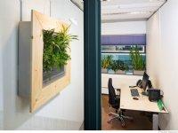 Moderne plantensystemen halen fijnstof uit lucht