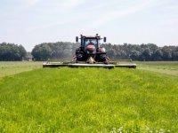 Vijf vragen over zonneparken op landbouwgrond