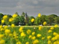 LTO Noord mengt zich in Friese natuurrealisatie