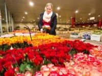 Miljoenenbereik Valentijnsdag-campagne social media