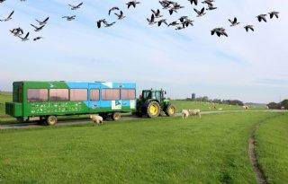 Buitendijks+land+Marrum+minder+agrarisch