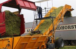Maïs per truck naar kuil op afstand (video)