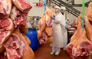 Recordhoeveelheid varkensvlees uitgevoerd