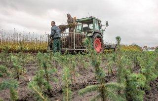 Koepelproject Plantgezondheid komt met resultaten