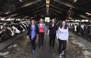 Stoer+meidenbedrijf+met+vijfhonderd+koeien