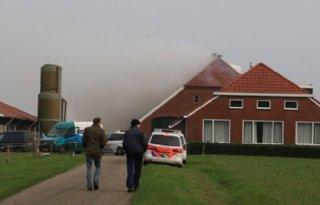Kalveren komen om bij stalbrand in Veendam