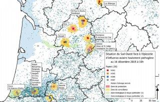 Nieuwe+gevallen+hoog+pathogene+AI+Frankrijk