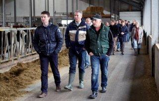 CBS: meer melkkoeien in Flevoland