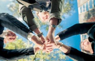 ZLTO+helpt+bij+Jonge+Landbouwersregeling