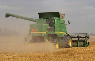 USDA+verwacht+grote+tarweoogst