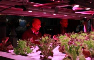 Club van 100 werft op Tuinbouwdagen (video)