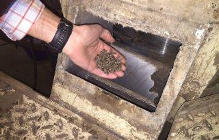 'Groene' fosfaatkorrel voor landbouw (video)