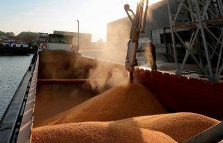 Lange+bewaarpool+Agrifirm+op+163%2C25+euro+voor+tarwe