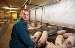 Ronde+vorm+van+PigPlaza+geeft+varkens+rust