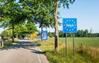 Omzet Vlaamse land- en tuinbouw 8 procent hoger