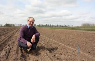 Hybrideaardappel voldoende groeikrachtig