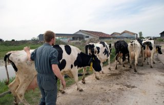 Dairy Campus koopt 45 hectare grond