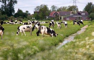 Maak+%C3%A9%C3%A9n+geluid+als+melkveehouders