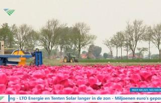 TV: Nederland stemt in met glyfosaat