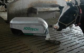 Fosfaat+voor+kwestie+jongvee%2C+melk+en+gras