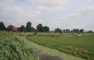 Beheerplannen+natuur+Laag+Holland+vastgesteld