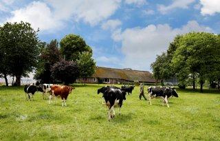 Boeren+Kampereiland+willen+geen+sterfhuisconstructie