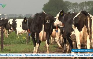 TV: melkveehouder hunkert naar marktherstel