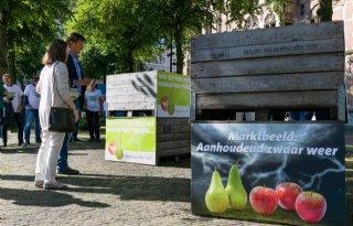 Fruitsector+wil+actie+Van+Dam+boycot+Rusland