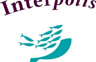 Interpolis%3A+400+meldingen+door+hagel