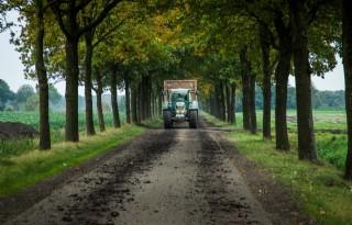 Bomen+op+boerengrond+leggen+veel+CO2+vast