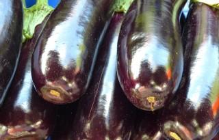 Bruinrot aangetroffen in aubergineteelt