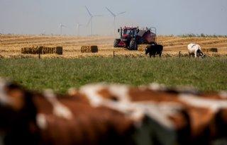 LTO Noord wil landbouw prominent in fusiegemeente