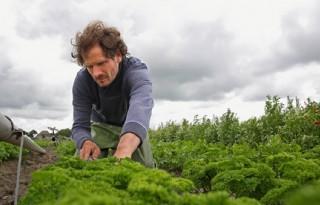 De Lepelaar teelt honderd verschillende gewassen