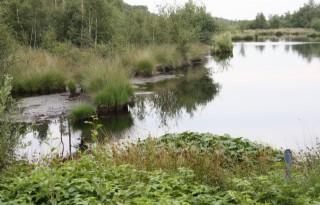 Overijssel+koopt+ruilgrond+in+Haaksbergen