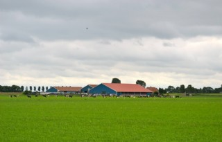 Leges+archeologie+Zuid%2DHolland+fors+lager